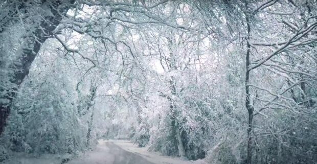 Przed nami kolejne śnieżyce! / YouTube:  Stardust Vibes - Relaxing Sounds