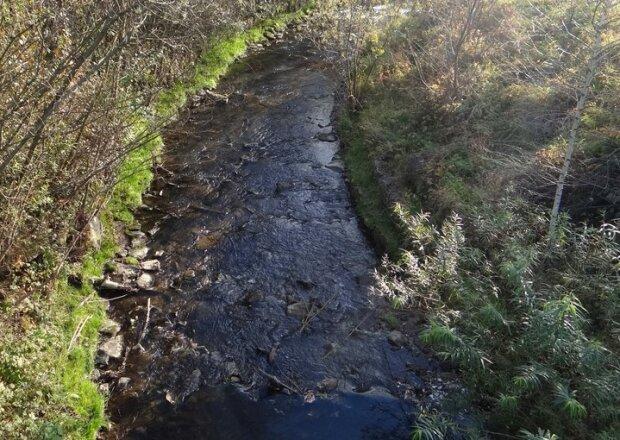 Czarna maź w jednej z górskich rzek. Zanieczyszczeniu Białki winne są zwierzęta, ekolodzy twierdzą co innego