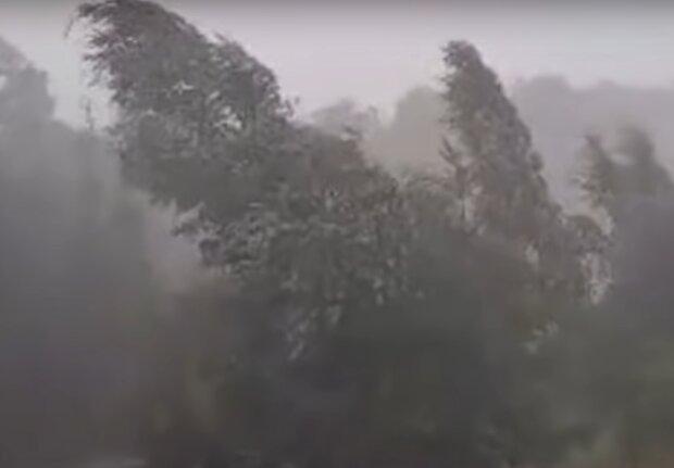 trąba powietrzna / YouTube: Telewizja Limanowa