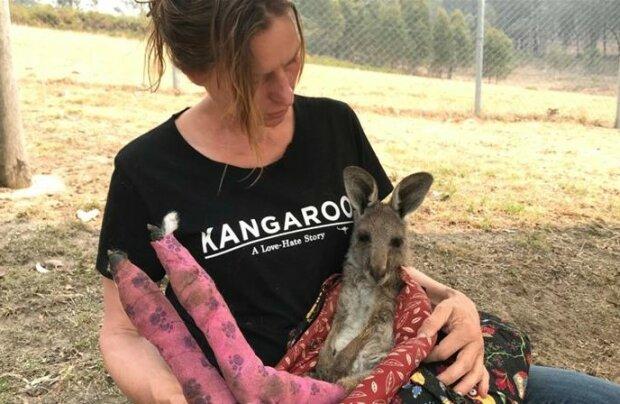 Ocalone z australijskich pożarów zwierzęta okazują wdzięczność za uratowanie życia w zaskakujący sposób. Te zdjęcia wyciskają łzy