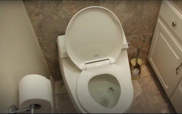 Świetny sposób na czystą toaletę! / YouTube:  Natural Cures