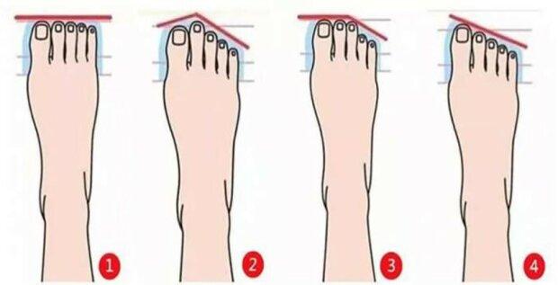 Rodzaj stopy jest ważny dla nas. Układ palców może nam wiele powiedzieć o człowieku