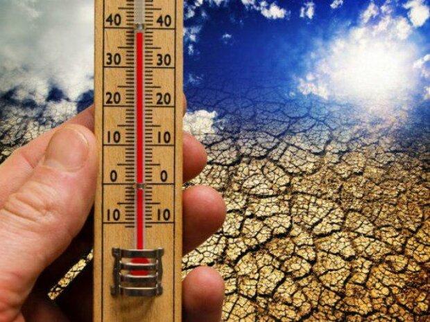 Są jasne dowody na globalne ocieplenie. 2019 kolejnym najcieplejszym rokiem w historii