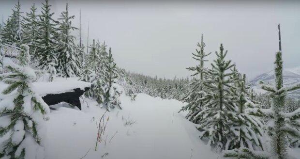 Już niebawem wróci do nas zima? / YouTube:  4K Relaxation Channel