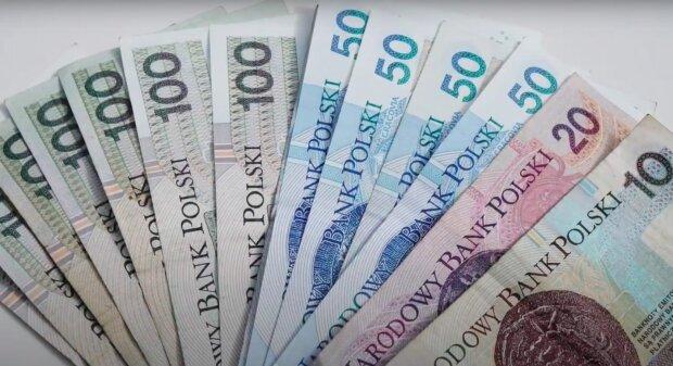 Można otrzymać spore dofinansowanie! / YouTube:  University of Poland
