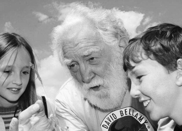 Ostatnia droga legendarnego dziennikarza i przyrodnika. Opłakują go fani na całym świecie