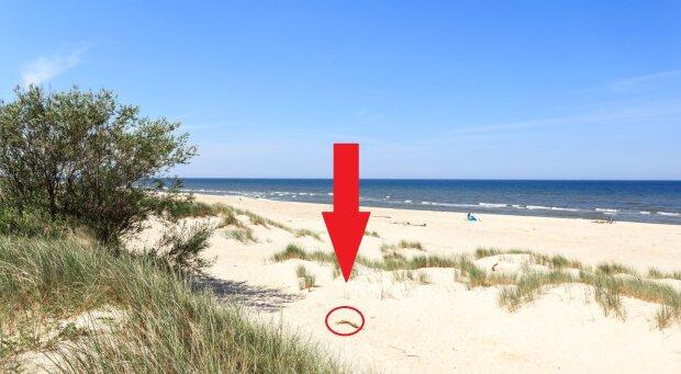 Niecodzienne znalezisko na plaży w Ustce