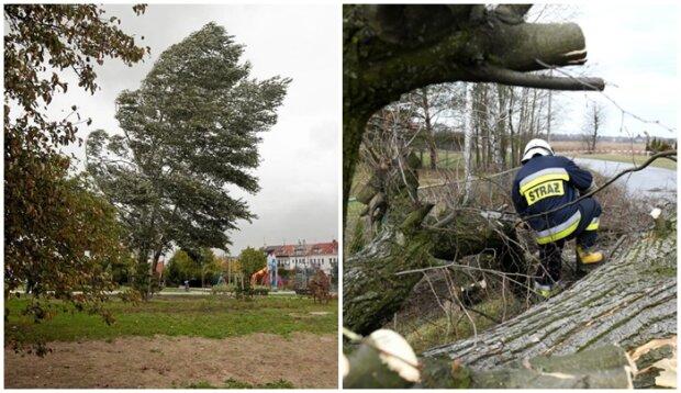 Niesamowite zawirowania pogodowe po raz kolejny nad Polską. Synoptycy IMGW znów ostrzegają przed gwałtowną aurą