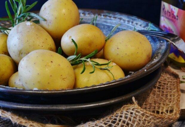 Wszyscy robimy te podstawowe błędy podczas przyrządzania posiłków z tym warzywem. Właśnie przez to staje się źródłem pustych kalorii