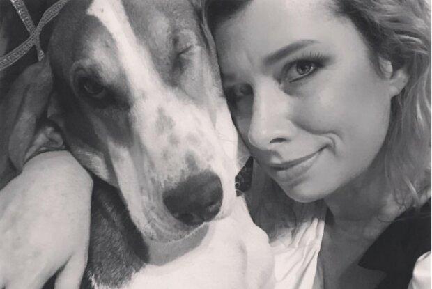 Pies uratował życie swojej właścicielce. Kobieta jest mu niezmiernie wdzięczna