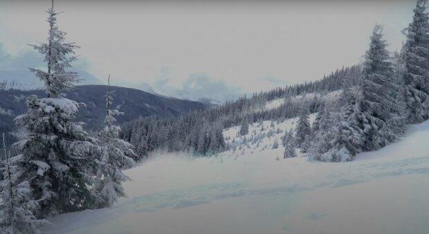 Wróciła do nas zima! / YouTube:  Nature Therapy