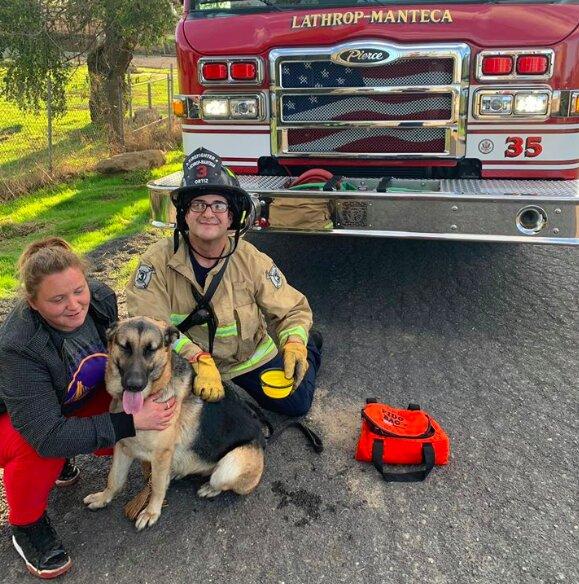 Niecodzienna akcja ratunkowa strażaków. Pomocy potrzebowało zwierzę