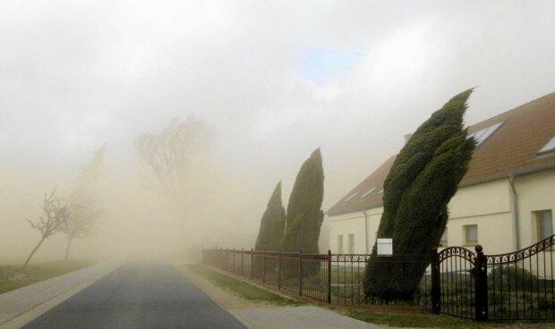 Silne wiatry w Polsce. Ucierpią dwa województwa, IMGW ostrzega