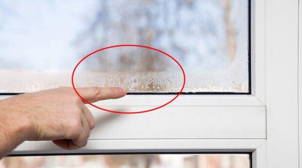 W ten prosty sposób można zapobiec częstemu parowaniu okien w domu. Niewiele osób o nim wie